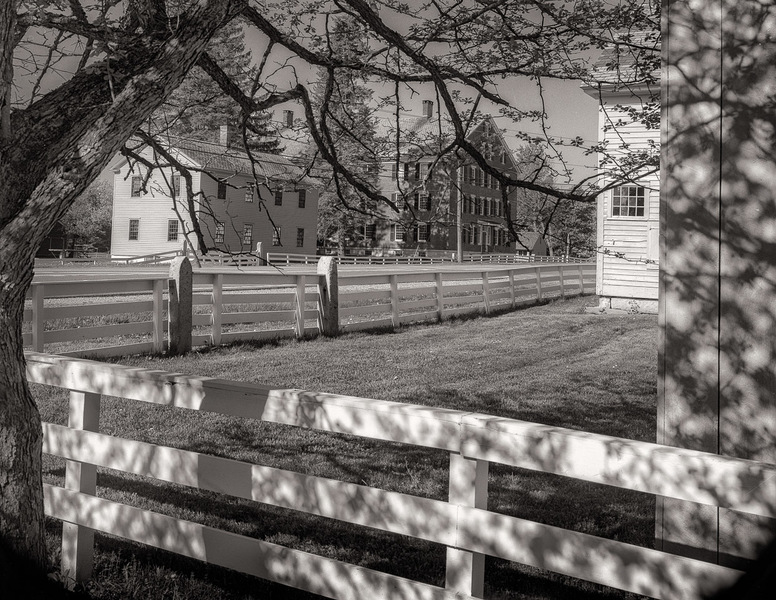 Fence & Spring Shadows